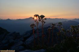 Sonnenuntergang am Roßkopf